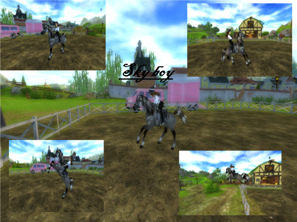 Mon 4ème cheval SSO