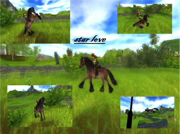 5 ème cheval SSO