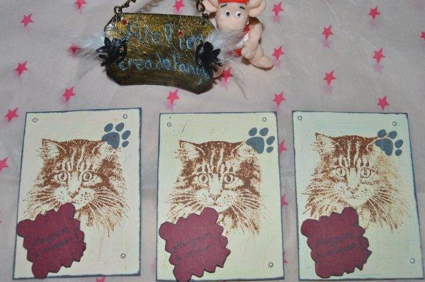 Artist Trading Card (atc)