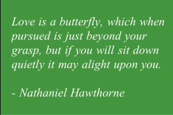 """""""L'amour est un papillon qui, lorsqu'il est poursuivi, se trouve juste au-delà de votre portée, mais si vous vous asseyez tranquillement, il se pourrait qu'il apparaisse juste au dessus de vous."""""""