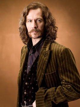 Galerie de portraits des Professeurs, du Directeur de Poudlard, de Sirius Black et Voldemort