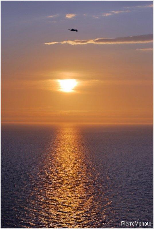 Du haut des falaises du Tréport , le coucher de soleil sur la mer