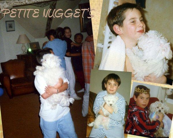 PETITE NUGGET'S