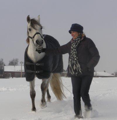 tenuto mon cheval préférer