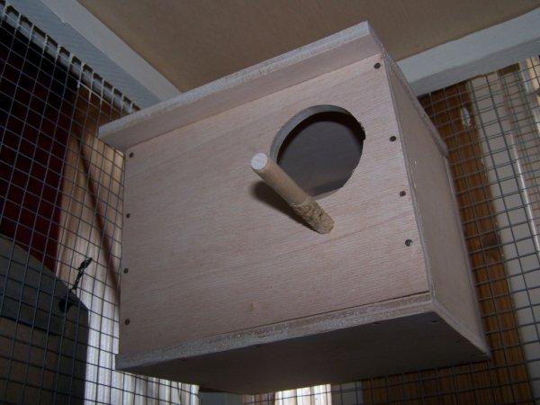 un nouveau nid pour mes péruches fabriqué par moi mème.