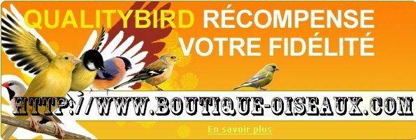 un magasin sympas et pas très chère pour nos oiseaux
