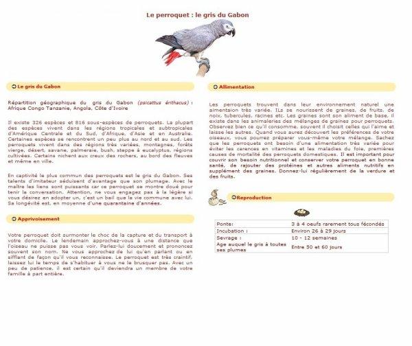 Fiche Conseil Du Gris Du Gabon