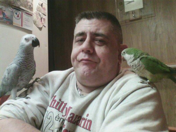 Ma passion mes oiseaux