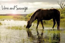 Libre et Sauvage