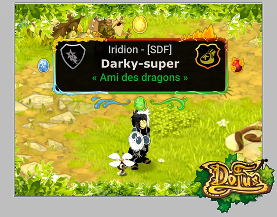 Dofus team Darky