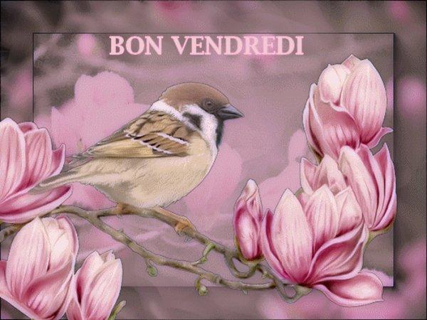 BON VENDREDI