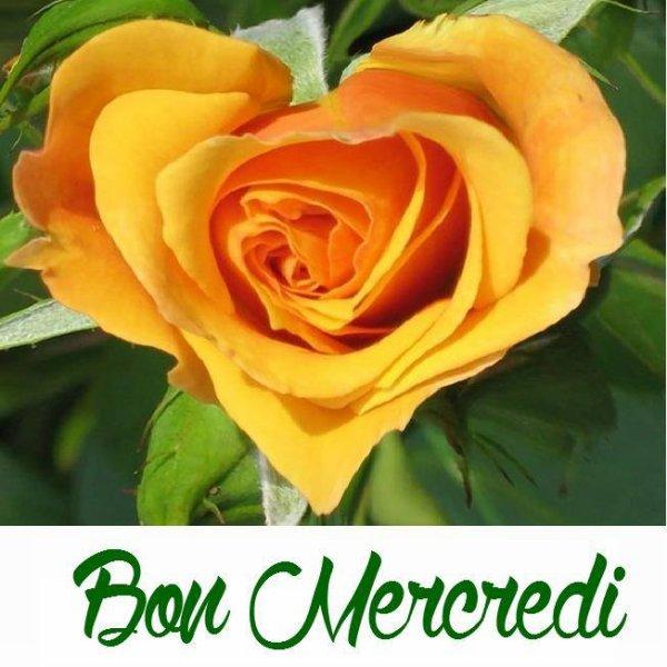 BON MERCREDI