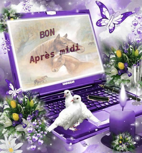 BONNE APRES MIDI