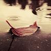 I talk to the rain ~