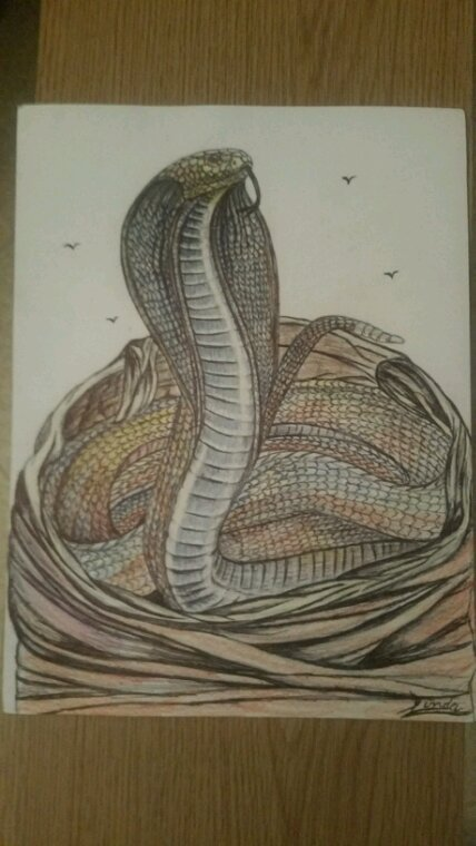 Création by Linda Tatatron.!!! ...crayons de couleurs d'écoliers