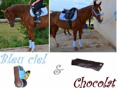Equipement Bleu ciel - Chocolat / Cheval & Cavalière / Titte-trotteuse