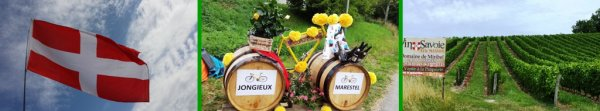 Bonjour famille et amis (es), ce week-end, passage du tour de France 2017 à Jongieux,