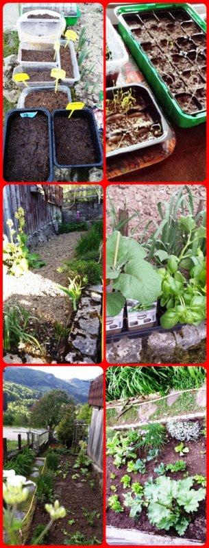 MOI ET MON JARDIN !   J'aime être dans mon jardinet : semer, planter, arroser, regarder pousser. Je perpétue des gestes ancestraux, je suis une autodidacte...