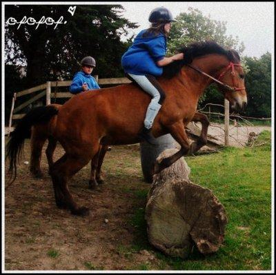 L'équitations est un sport individuel, qui se pratique a deux.