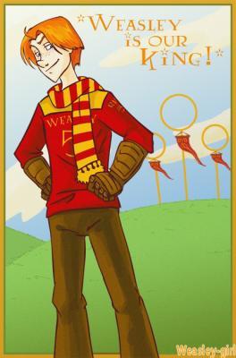 """""""Votre père aurait été fier de vous. Lui aussi était un excellent joueur de Quidditch."""" _ Minerva McGonagall"""