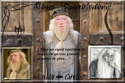______-_________''_______Son passé est une des grande surprise du tome 7 ! ________________________'__ _J'avais déjà fait une biographie de Dumbledore mais c'était avant d'apprendre toutes ces choses sur lui et sur sa famille.