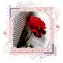 Photo de lire-des-livres38