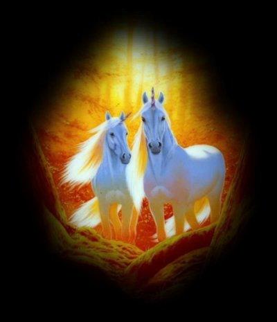 les chevaux mithique , eux aussi sont beau