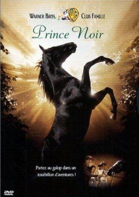 prince noir , un film magique et une amitié irrésistible a regarder malgré tout les malheurs qu'il a subit