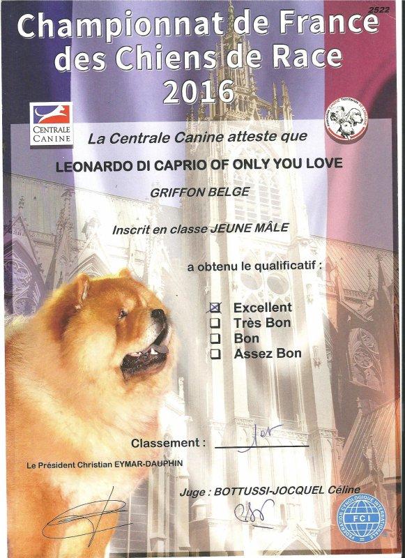 Léonardo Di Caprio : 1er excellent au Championnat de France 2016