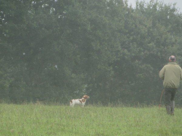 Tan de la Feuillée dimanche dernier, sous la pluie !