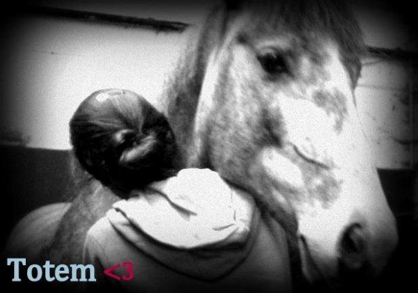 Mon Amour De Totem ! ♥