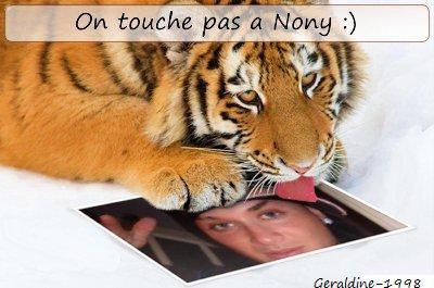 Nony et le Tigre