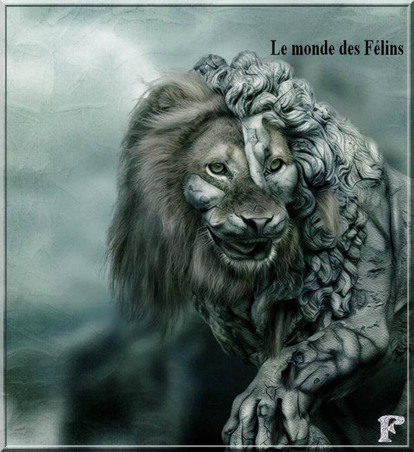 (l)(l) Une image que j'aime beaucoup le Lion de toute ses formes !!! (l)(l)