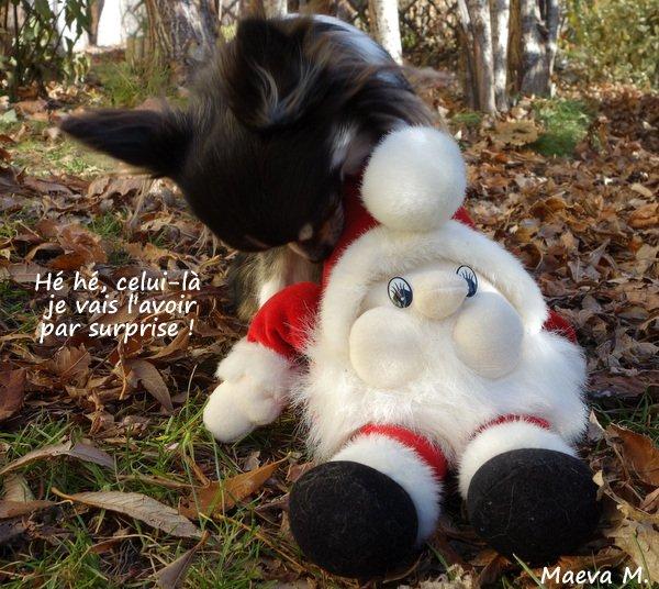 Quand le père Noël s'aventure chez nous ;)