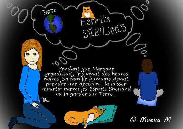 BD 2 : L'arrivée de Maroane & Vidéo Shet & Cie