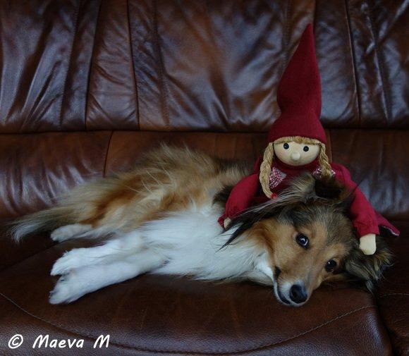 Le Conte de Noël d'Iris