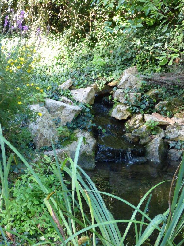 Les jardins aquatiques de Saint-Didier-sur-Chalaronne, août 2016, suite
