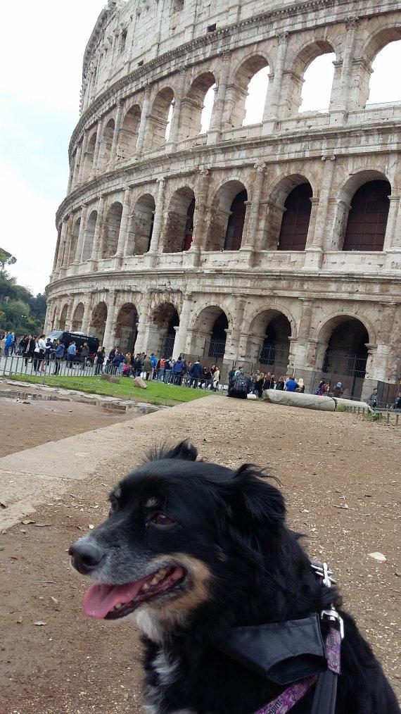 Italie, Novembre 2016 : portable Italie, Novembre 2016 : portable