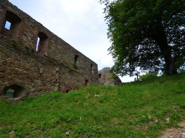 Château de Ferrette, juin 2018