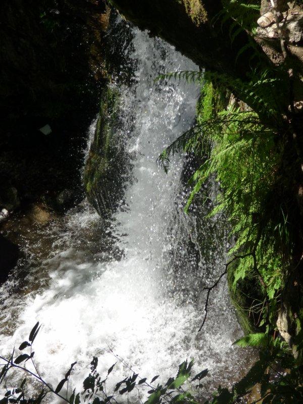 Cascade de Todtnau, juin 2018