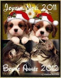 Bonne année les filles