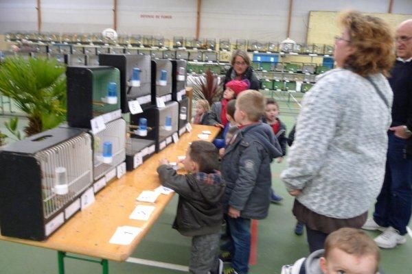 le  vendredi  accueil  des  écoles  primaire  de  MELGVEN