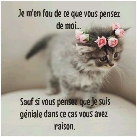 MDR CHAT