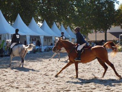 Vichy 2010