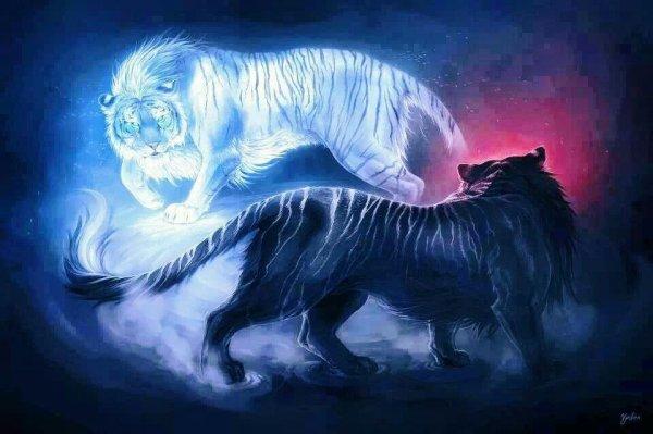Le tigre multiples facettes