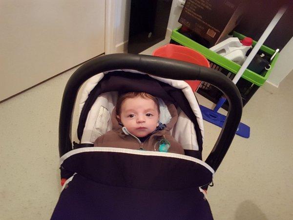 Mon deuxième petit fils