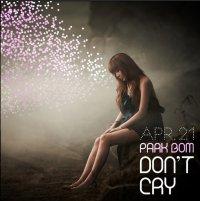~ Don't Cry - Park Bom ⸗ ♥ (2011)