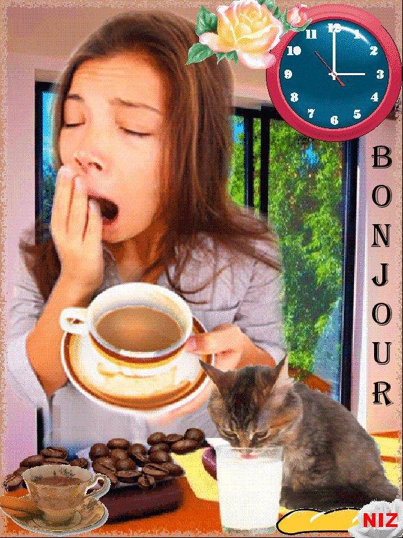 CAFE  OFFER ET UNE ROSE ET UN BISOUS PIERRE