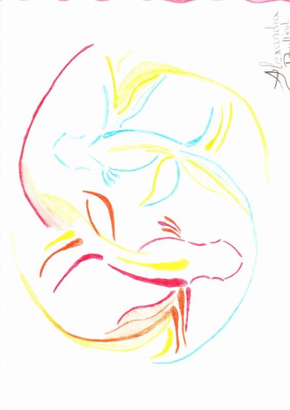 dessin aux crayon de couleur aquarelle