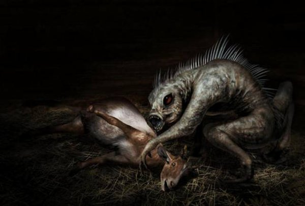 Le Bestiaire de Mizuko: Vampire, Chupacabra et Animalito (FearMoon)